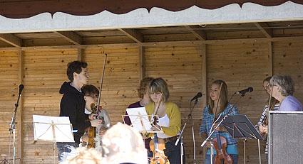 fiolspel