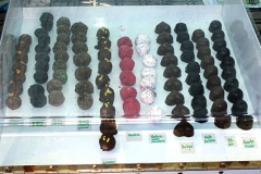 chocolaterie11_558